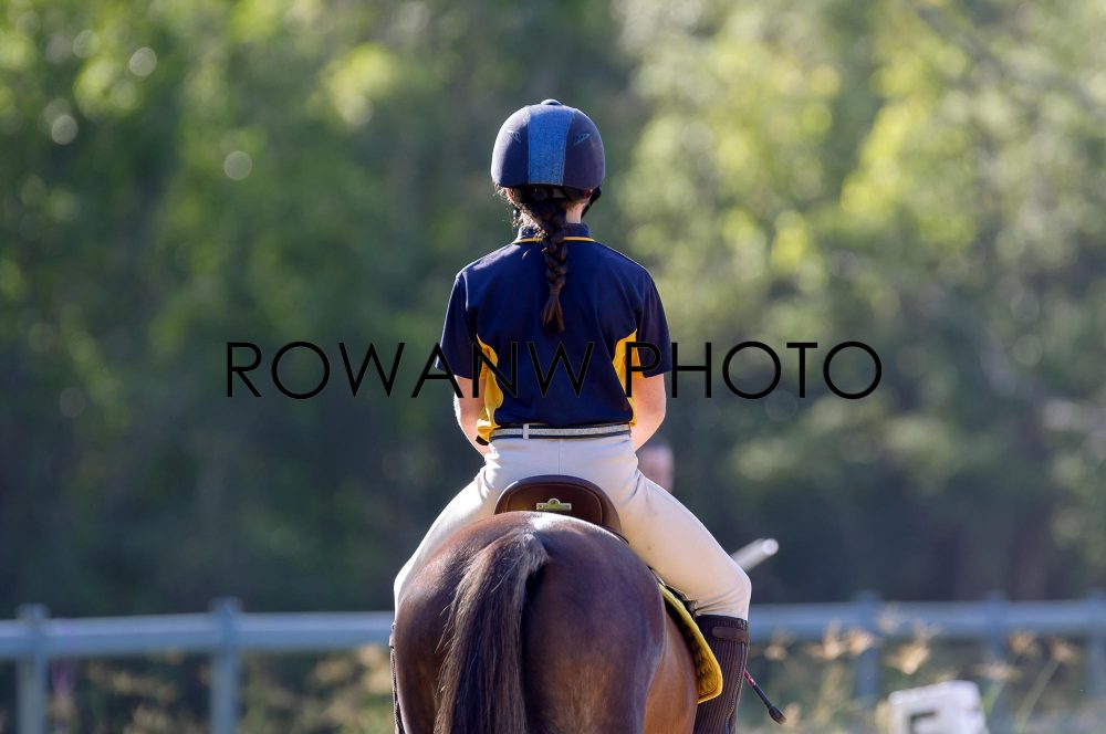 LVRC Members-Only Dressage Apr 28