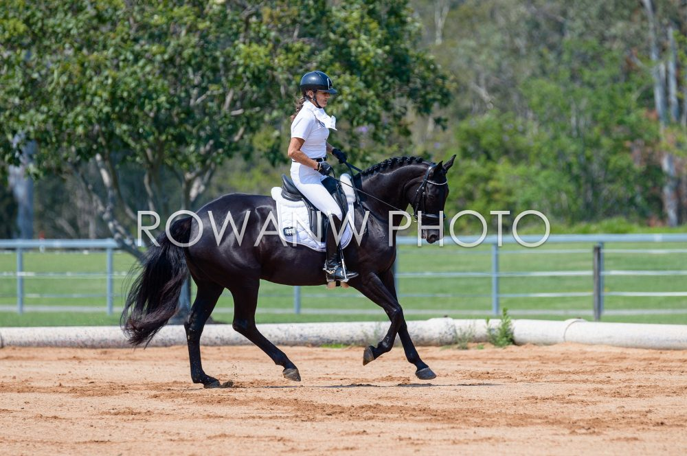 Caboolture Dressage Group Championships