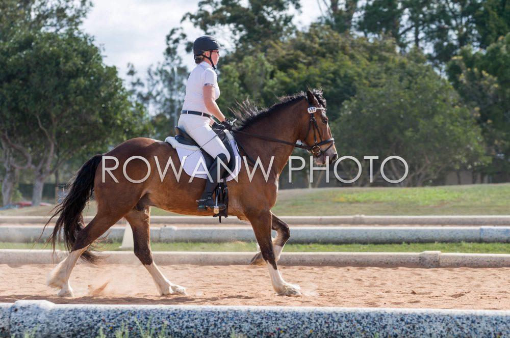 13 Sep – CDG Club & Participant Dressage (OTT Series)